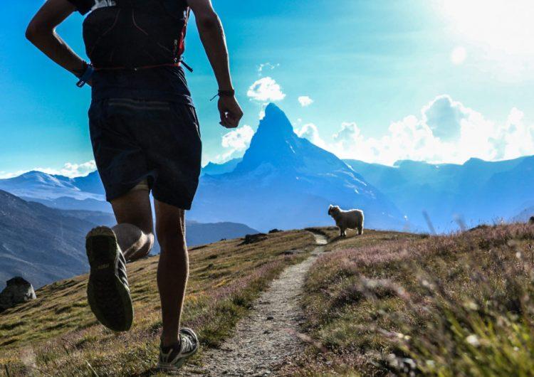 La evolución en acción: cómo un gen permitió que los humanos se convirtieran en corredores de largas distancias