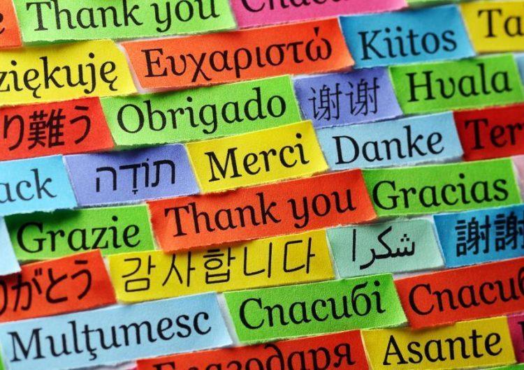 El cerebro bilingüe: esto es lo que ocurre cuando pasas de un idioma a otro