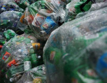 Por 21 años una mujer recicló botellas para una fundación contra el cáncer… y logró donar 11 mil dólares
