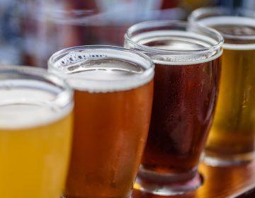 Cerveza mexicana: elíxir que recupera y comunica historias