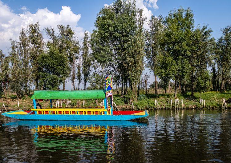 De Xochimilco a Austria: el comercio local se recrea a sí mismo