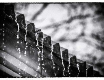 Cosechar agua de lluvia: Solución para la escasez