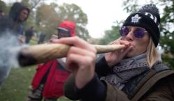 Canadienses están felices con legalización de la mariguana, pero no…