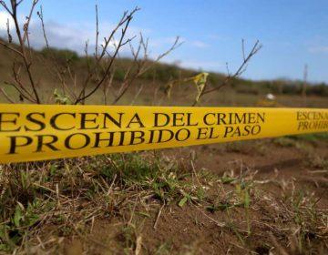 Fosas en Jalisco: decenas de cuerpos siguen sin ser identificados