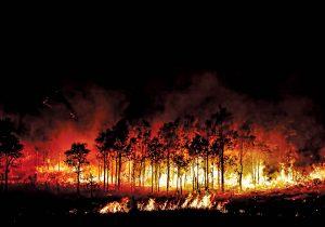 """Estados Unidos vive un verano de humo """"sin precedentes"""""""
