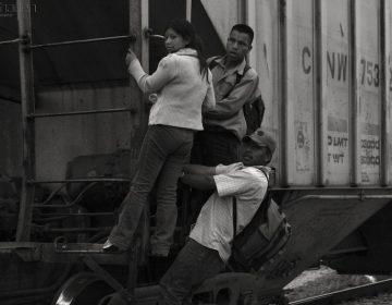 Preparan ley para la defensa de los migrantes en Querétaro