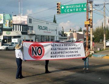 Promete gobierno reubicación de árboles y apoyos a comercios por desnivel