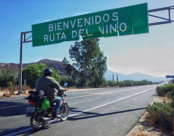 Los viñedos de Baja California que empobrecen a sus pueblos