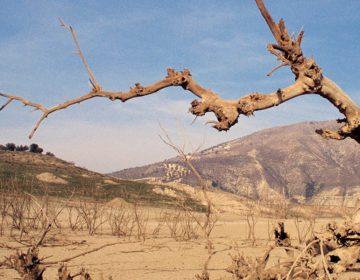 Mixteca, zona centro y Serdán más vulnerables ante cambio climático: Ibero