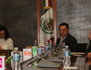 Plantean 50 mdp a partidos en 2019 en Hidalgo; 39% para Morena