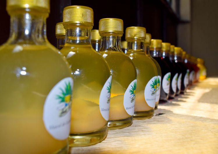 Tumban impugnación para impedir producción de mezcal en Aguascalientes