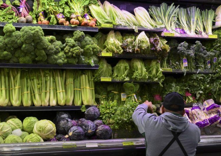 Autoridades de EE. UU. recomiendan evitar el consumo de lechuga romana tras brote de E. coli
