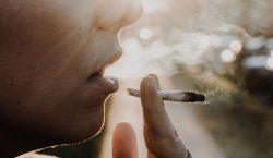 ¿Cuál será la siguiente nación en legalizar la marihuana? Varios…