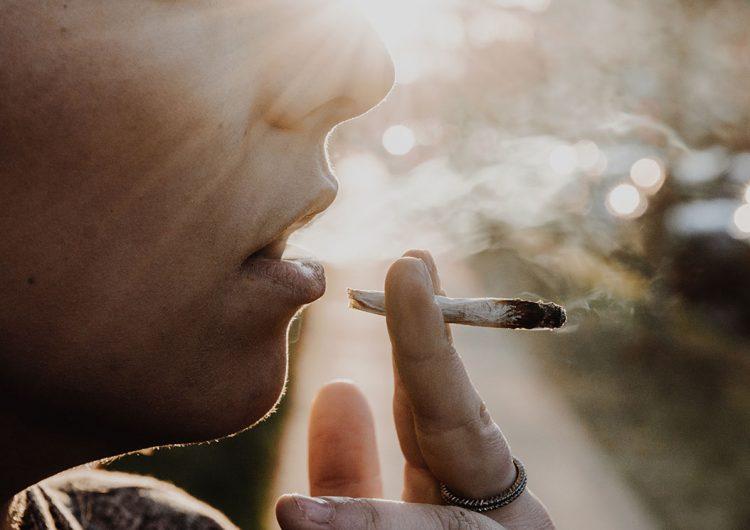 Un México con marihuana legal