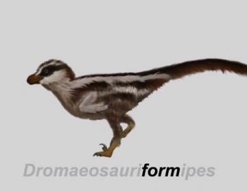 Encuentran las huellas del dinosaurio más pequeño del mundo: cabía en la palma de la mano