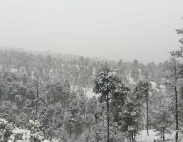 Se pronostican bajas temperaturas en SLP por los próximos 50 frentes fríos