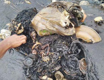 Vasos, botellas y bolsas: el estómago de una ballena muerta exhibe la contaminación del mar