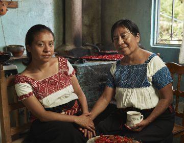 Las mujeres que reactivaron su economía cultivando chiles
