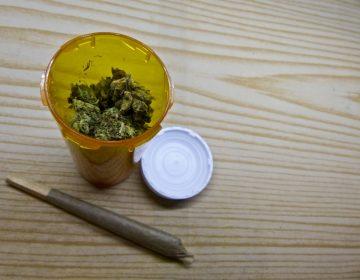 Morena inicia el proceso para despenalizar la marihuana