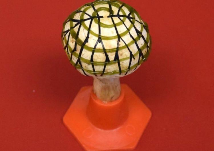 "Científicos convierten un champiñón de supermercado en un ""hongo biónico"" que produce electricidad"