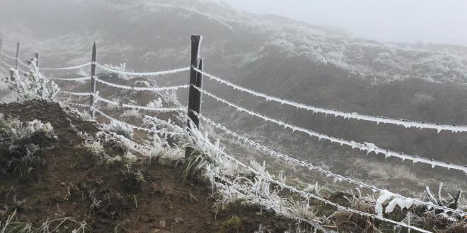 Deja frío aguanieve, lluvias, hipotermia y caída de árboles en Hidalgo