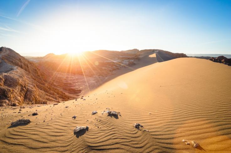 Las primeras lluvias en siglos arrasaron con la vida de una de las regiones más áridas de la tierra