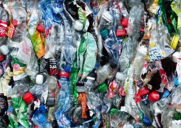 San Luis Potosí prohíbe envases plásticos en escuelas para reducir generación de basura