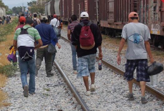 Guanajuato | Migración una tragedia global