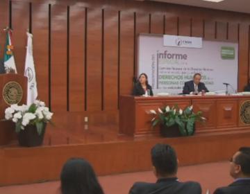 Gobierno de Jalisco no colaboró con CNDH para informe sobre discapacidad: Luis Raúl González
