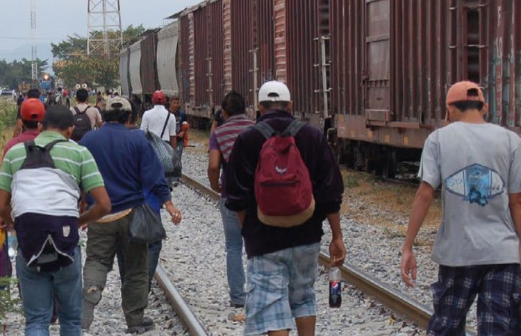 Querétaro | Migración: una tragedia global