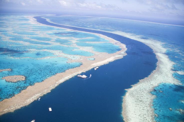 Resultado de imagen para gran barrera de coral australia