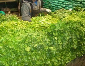 Frentes fríos provocan alza de precios en hortalizas