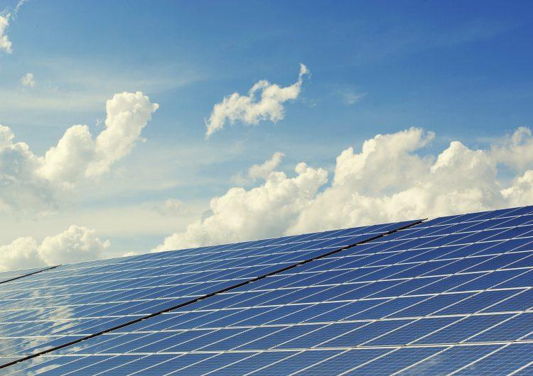 Ante tarifas de luz, urgente el uso de energías alternativas: Tere Jiménez