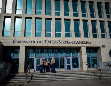 Grillos: ¿Los responsables del ataque sónico contra diplomáticos de EE. UU. en Cuba?