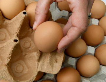 Un huevo destrona a las Kardashian: Tiene más likes que cualquier otra foto en Instagram