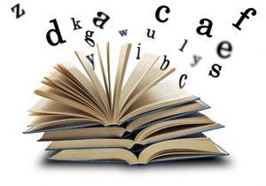 Dos diccionarios bajo el brazo