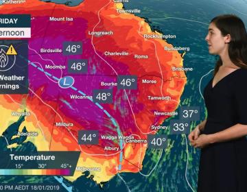 Ola de calor en Australia provoca la muerte de animales y plantas
