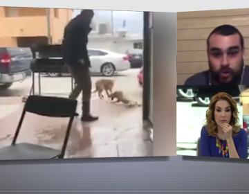 """VIDEO Redes inculpan al """"Gerardo Herrera"""" equivocado por la agresión a perro; """"fue mi medio hermano"""", asegura"""