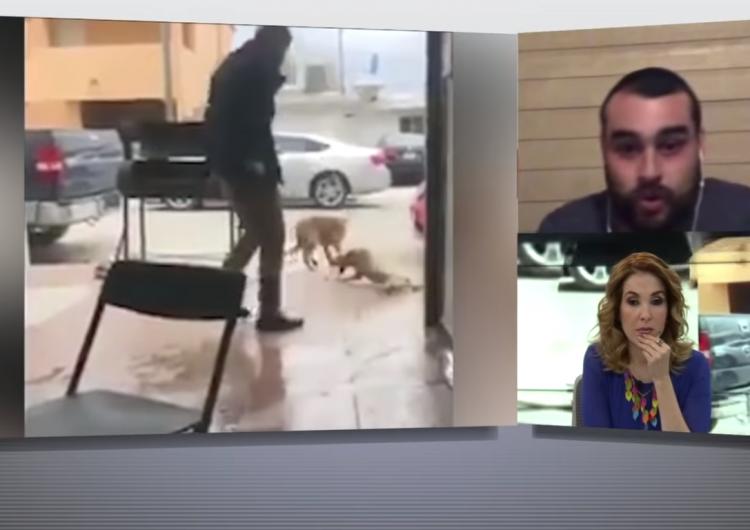 perrito-video-milenio-maltrato-animal