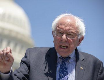 Socialista y rival de Trump: Bernie Sanders lanza su carrera por la Casa Blanca