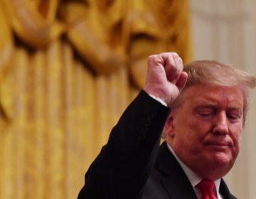 La Cámara baja de EU le da un revés a Trump: Vota por anular la emergencia nacional con la que busca construir el muro