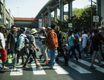 Así promueven mexicanos la paz para refugiados y migrantes