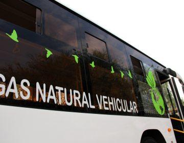 Llegarán 53 nuevos camiones urbanos ecológicos a Aguascalientes