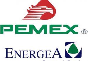 Contratos millonarios: el caso Pemex