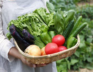 Nueve proyectos de cocina como estrategia de cambio social