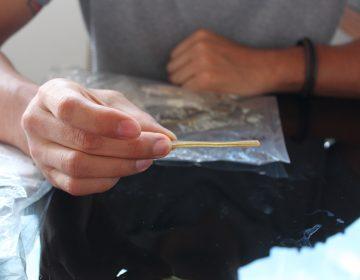 Alto a la contaminación: desarrollan en Oaxaca popotes y cucharas biodegradables