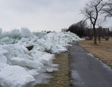 """Qué es y cómo se formó el """"tsunami de hielo"""" que sorprendió las cercanías del río Niágara"""