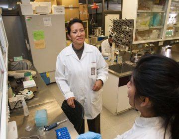 Científica mexicana elimina por completo el virus del papiloma humano en un grupo de mujeres