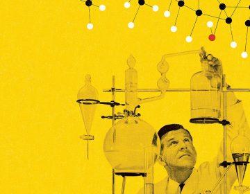 El desarrollo de órganos de niños lo afectan químicos de uso cotidiano