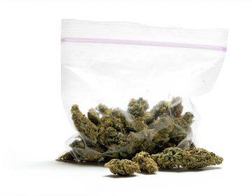 ¿Sabemos suficiente de los efectos que provoca la marihuana en la salud?